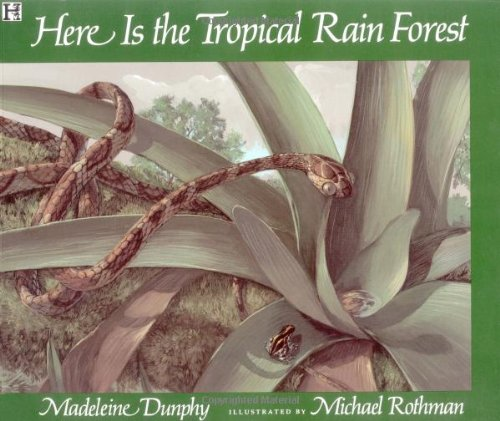 9780786812127: Here is the Tropical Rainforest