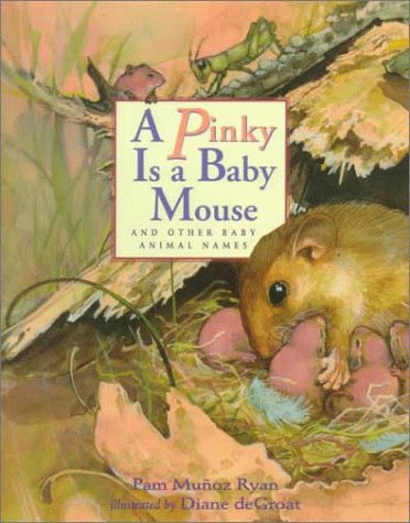 9780786821907: A Pinky is a Baby Mouse: And Other Baby Animal Names