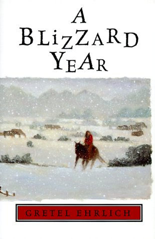 9780786823093: A Blizzard Year