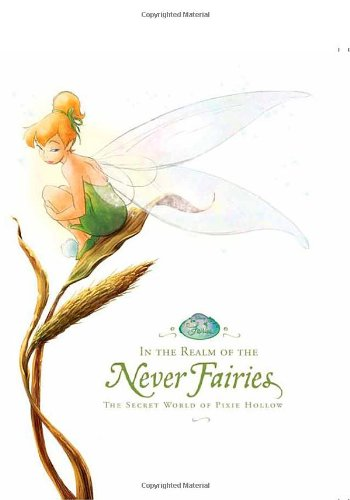 9780786847655: In the Realm of the Never Fairies: The Secret World of Pixie Hollow (Disney Fairies)