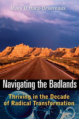 9780787971380: Navigating the Badlands: Thriving in the Decade of Radical Transformation (Business)