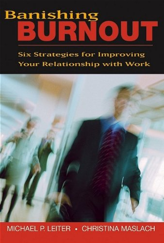 9780787976088: Banishing Burnout: Six Strategies For Improving Your Relationship With Work