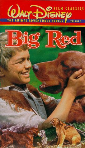 9780788806636: Big Red [VHS]