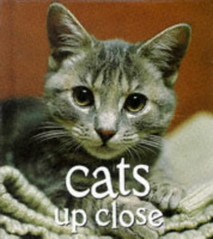 9780789201980: Cats Up Close (Tiny Folio)