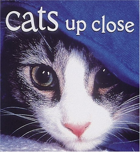 9780789205100: Cats Up Close (Tiny Folios)