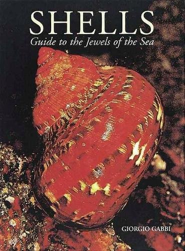 9780789206312: SHELLS GUIDE TO THE JEWELS OF THE SE GEB