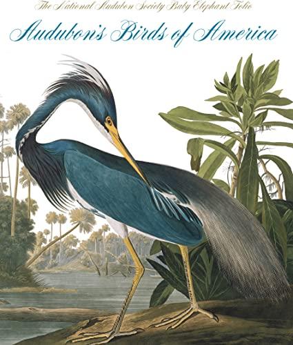 9780789211354: Audubon's Birds of America: The National Audubon Society Baby Elephant Folio