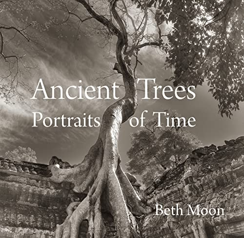 9780789211958: Ancient Trees: Portraits of Time