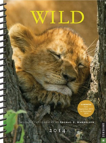 Wild 2013-2014 Engagement Calendar: Wildlife Photography by Thomas D. Mangelsen: Mangelsen, Thomas ...