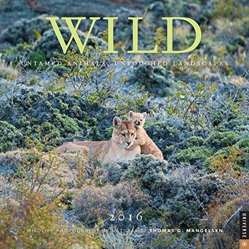 9780789330093: Wild 2016 Calendar: Untamed Animals, Untouched Landscapes