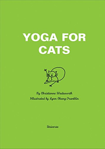 9780789331304: Yoga For Cats