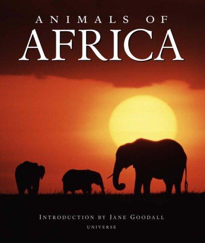 9780789399939: Animals of Africa