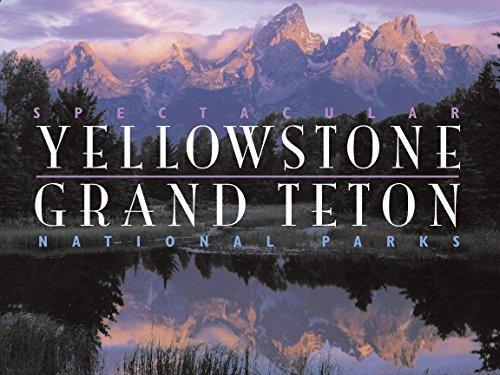 Spectacular Yellowstone and Grand Teton National Parks: Charles Preston