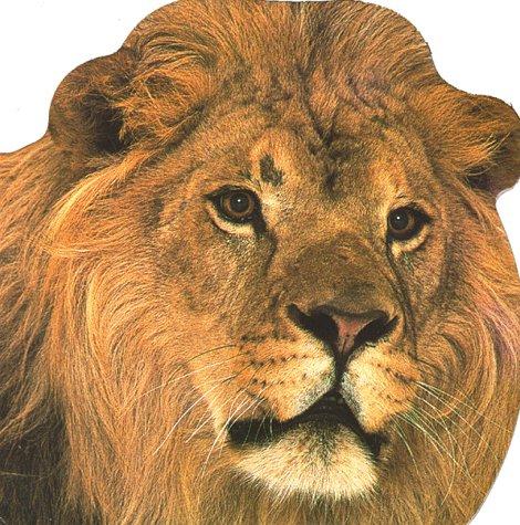 9780789406194: Wild Animals (Snapshot Shaped Board Books)