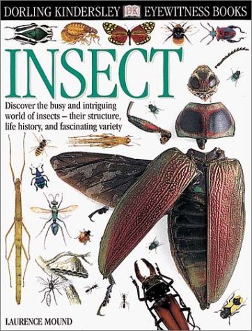 9780789458162: Eyewitness: Insect (Eyewitness Books)