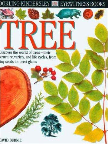 9780789458209: Eyewitness: Tree