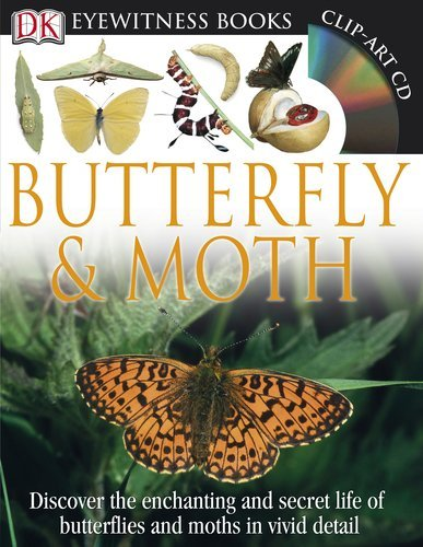 9780789458339: DK Eyewitness Books: Butterfly and Moth