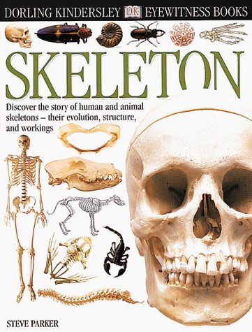 9780789458346: Skeleton (Eyewitness Books)