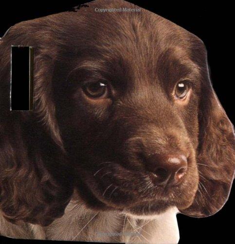 9780789466563: Puppy Stroller Book