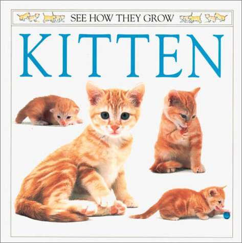 9780789476579: Kitten (See How They Grow)