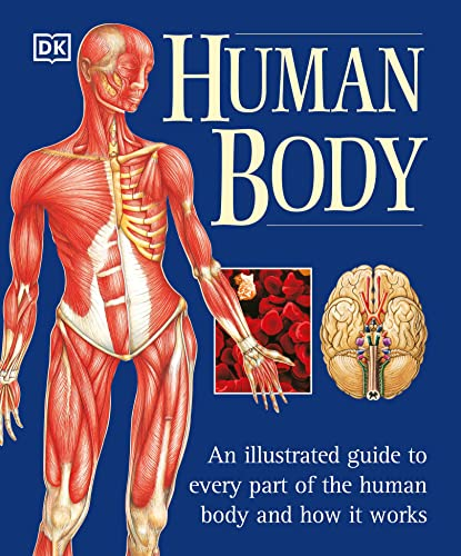 9780789479884: Human Body: An Illustrated Guide to Every Part of the Human Body and How It Works