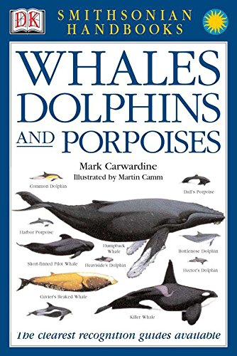 9780789489906: Whales, Dolphins and Porpoises