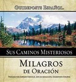 9780789911940: Sus Caminos Misteriosos/His Mysterious Ways: Milagros de Oracion/Miracles of Prayer