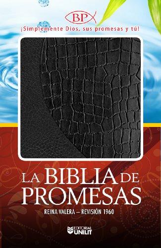 9780789917959: La Biblia de Promesas-Rvr 1960