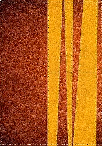 9780789918215: La Biblia de Promesas-Rvr 1960