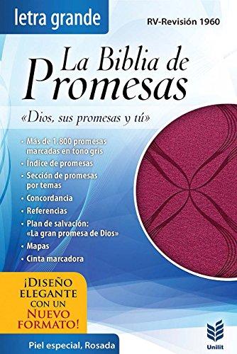9780789920997: La Biblia de Promesas-Rvr 1960