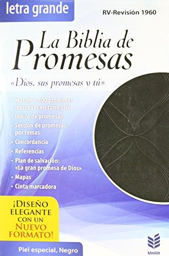 9780789921208: La Biblia de Promesas-Rvr 1960
