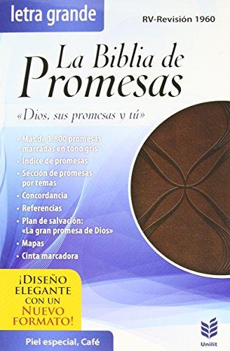 9780789921215: La Biblia de Promesas-Rvr 1960