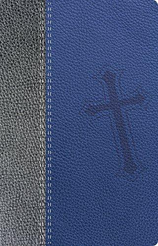 9780789921949: Biblia de promesas NTV - Juvenil - Piel especial - Azul//NTV Promise Bible - Youth - Deluxe - Blue (Spanish Edition)