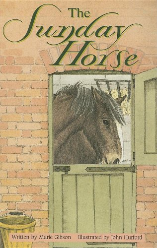 9780790118024: The Sunday Horse (When Things Go Wrong)