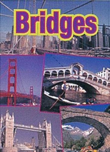 9780790122427: Bridges: Cougar (Wildcats)