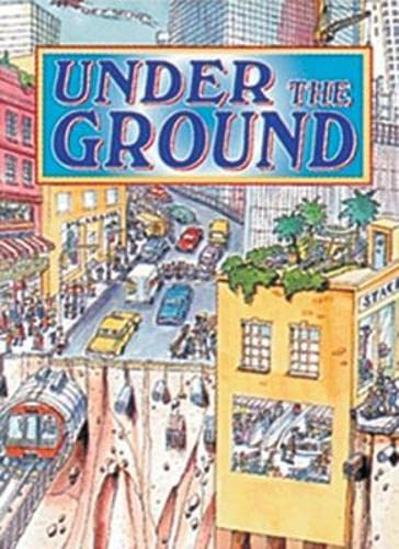 9780790122496: Under the Ground: Panther (Wildcats)