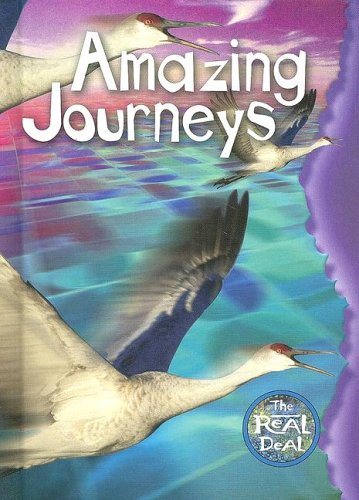 9780791087695: Amazing Journeys (Real Deal (Chelsea House))