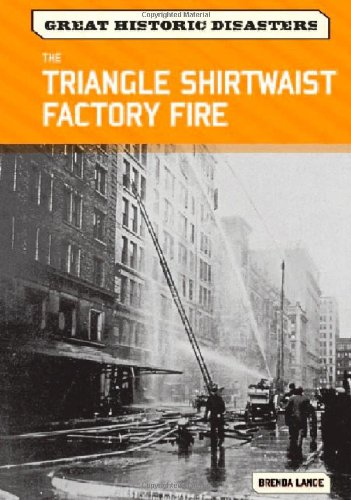 9780791096413: The Triangle Shirtwaist Factory Fire