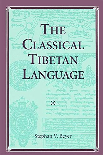 9780791410998: The Classical Tibetan Language (S U N Y Series in Buddhist Studies)