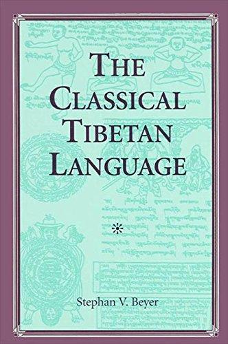 9780791410998: The Classical Tibetan Language (Suny Series in Buddhist Studies) (English and Tibetan Edition)