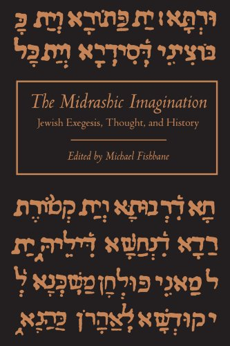 9780791415221: The Midrashic Imagination Jewish Exegesis, Thought, and History