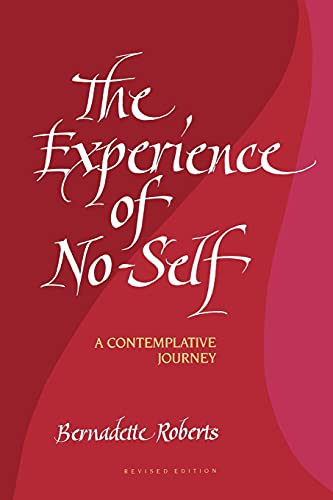 9780791416945: The Experience of No-Self: A Contemplative Journey