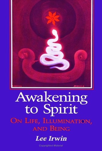 Awakening to Spirit: On Life, Illumination, and Being (Suny Series, Explorations in Contemporary ...