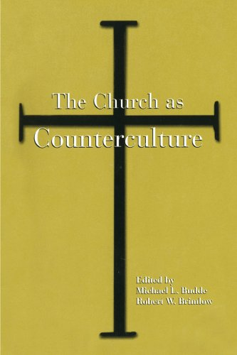 9780791446089: The Church as Counterculture (Suny Series, Popular Culture & Political Change) (Suny Series in Popular Culture and Political Change)