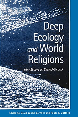 new world religion essay The relationship between religion and science is the subject of bv, 2011, indic religions in science and religion around the world, john hedley brooke and ron thomas, geoffrey cantor, and stephen pumfrey (eds), 2010, science and religion: new historical perspectives.