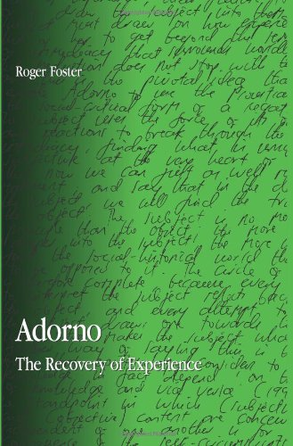 9780791472095: Adorno: The Recovery of Experience