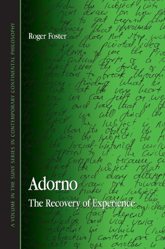 9780791472101: Adorno: The Recovery of Experience