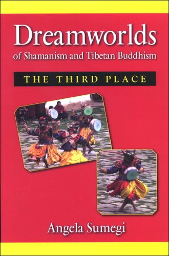 9780791474631: Dreamworlds of Shamanism and Tibetan Buddhism: Third Place