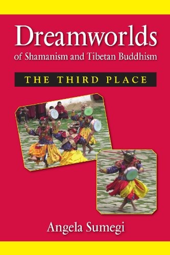 9780791474648: Dreamworlds of Shamanism and Tibetan Buddhism: The Third Place