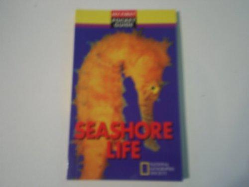 Seashore life (My first pocket guide): Kinghorn, Jenna